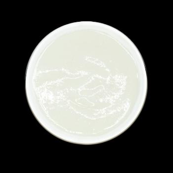 [체험팩] 양배추미음